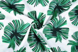 Linnenlook tropisch blad groen