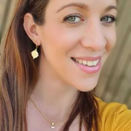 Earrings Hart Shine   (Gold/Silver)