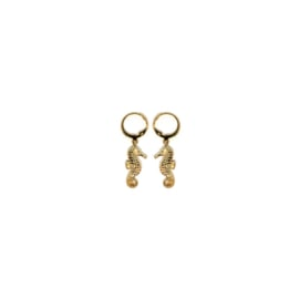 Earrings Zeepaard Goud