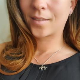 Zilveren Ketting met hanger Luipaard