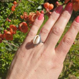 Zilveren Ring Schelp