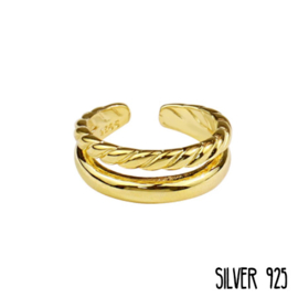 Gouden Ring Dubbel Gedraaid