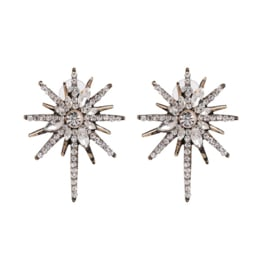 Statement oorbellen Strass Star