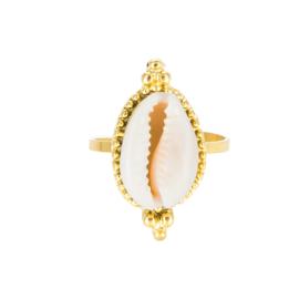 Gouden Ring Schelp