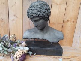 Buste Hermes op staal