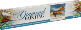 Diamond Painting horse 30x30
