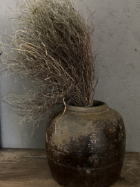 Oude olijfpot