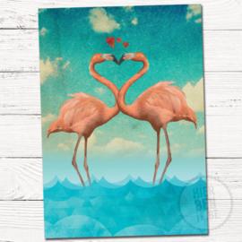 Flamingo's - Hierbenik