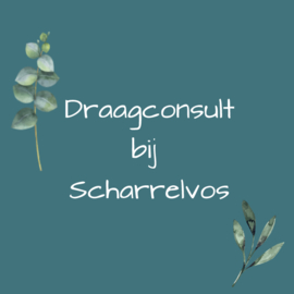 Draagconsult - 1,5 uur