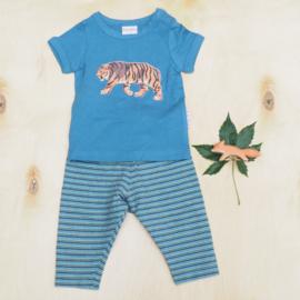 Broek streepjes + t-shirt met tijger