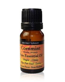 Cornmint Etherische Olie