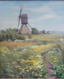Cor van Oel