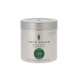 True Grace: Walled Garden Wild Mint Tin - 250gr
