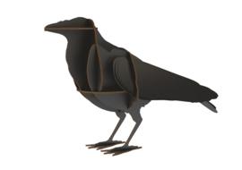 Raven Edgar