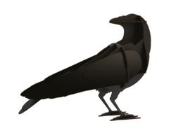 Raven Gustav