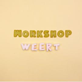 Workshop - Weert - 26 januari