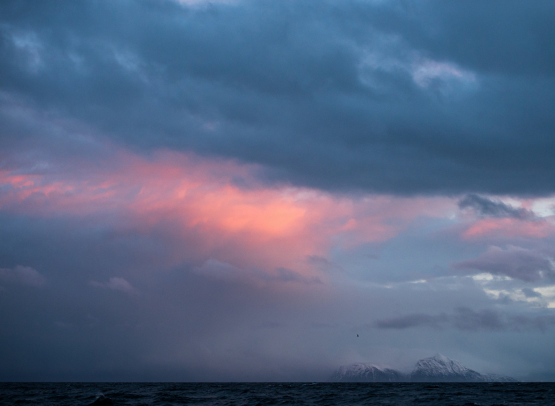 Wenskaart - Sea and Land