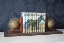 Mooie boekenplank met wereldbollen inc dieren encyclopedie
