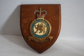 Wapenschild Royal Air Force Police
