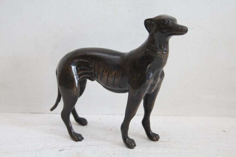 Hazewindhond - brons