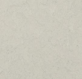 Marmoleum Click SILVER SHADOW