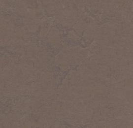Marmoleum Click DELTA LACE