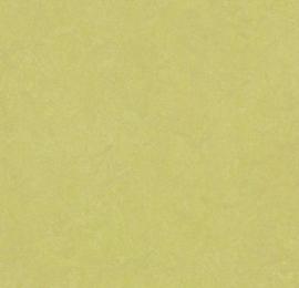 Marmoleum Click SPRING BUD