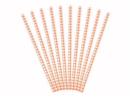 Papieren Rietjes Chevron Oranje