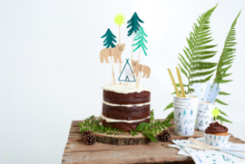 Cake Toppers - Let's Explore