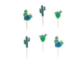 Kaarsjes Cactus