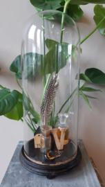Hoge ronde glazen stolp - M