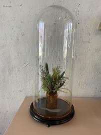 Ronde glazen stolp - 54 cm