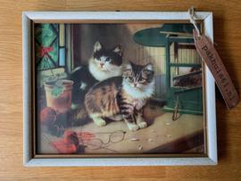 Kittens - ingelijste afbeelding