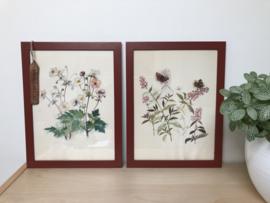 Twee afbeeldingen van bloemen