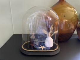 Ovale glazen stolp - 38 cm
