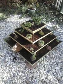 Kruidenplantenbak 100 x 100 cm
