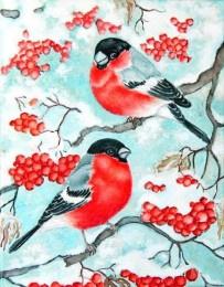 Schilderen Op Nummer - Vogels