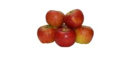 Biologische Appel Rode Topaz | 500 gram