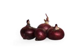 Biologische Uien rood | 500 gram