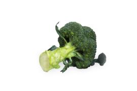 Biologische Broccoli | 350 gram