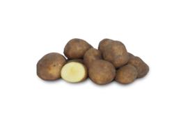 Biologische Aardappel Kriel | 1 kg