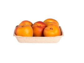 Biologische Abrikozen | 500 gr