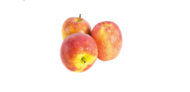 Biologische Appel Natyra | 500 gram