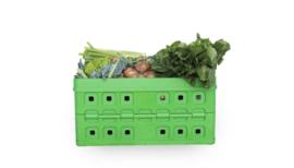 Biologisch Fruitpakket