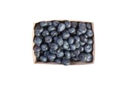Biologische Blauwe bessen   125 gram