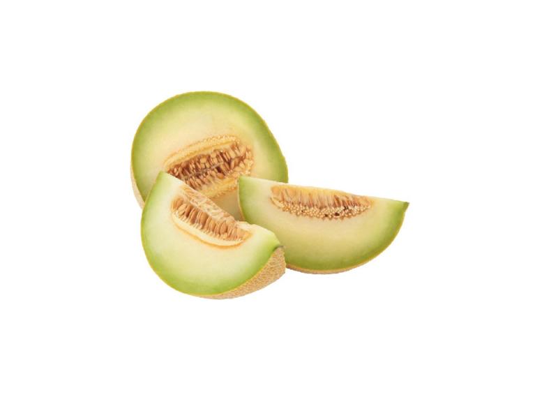 Biologische Meloen Galia | 1 stuk