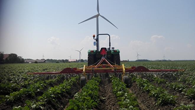 Biologische groente Noord-Holland