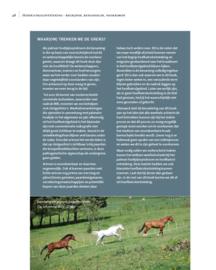 Hoefkatrolontsteking begrijpen, behandelen, voorkomen  - Remco Sikkel (2019)