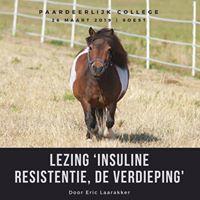 26 Maart 2019 - Lezing:  'Insuline resistentie, de verdieping' Door Eric Laarakker.