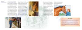 Paard en voer - Andrea Ellis